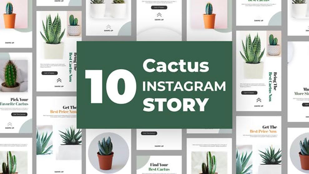 پروژه افترافکت استوری اینستاگرام Cactus Instagram Story Pack
